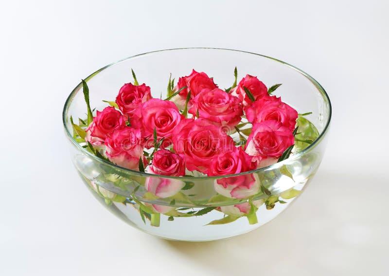 Bol de vidrio con las rosas fotograf a de archivo imagen - Bol de vidrio ...