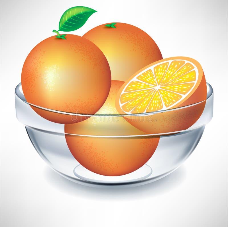 Bol transparent d'oranges illustration de vecteur