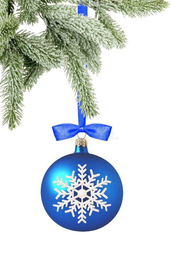 Bola azul de la Navidad y rama de árbol aislada sobre el backgrou blanco imagen de archivo