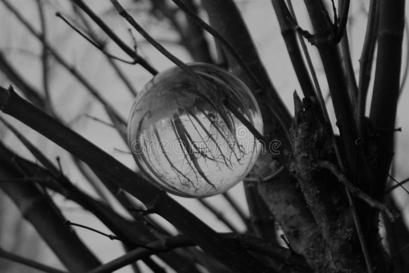 Bola de cristal preto e branco imagens de stock