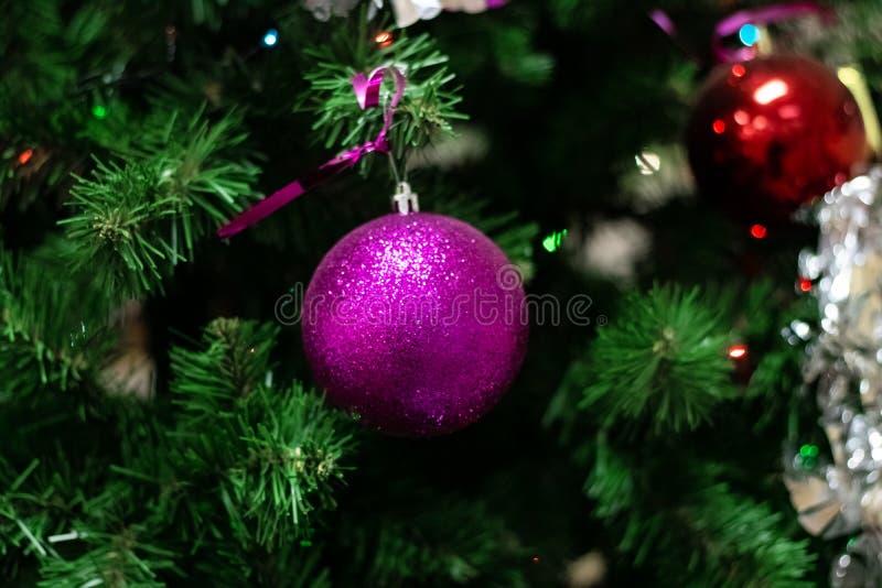 Bola de cristal rosada en un abeto del Año Nuevo imagenes de archivo