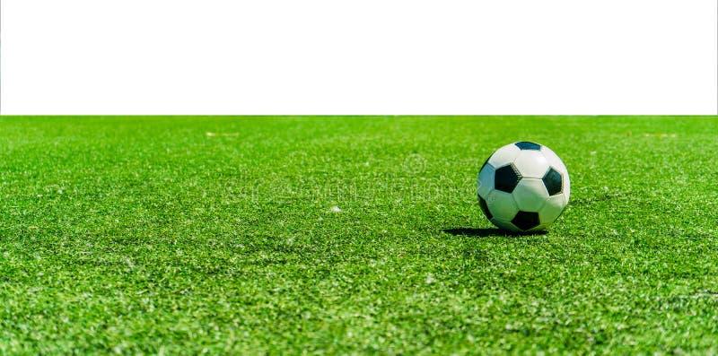Bola de futebol na grama contra o fundo branco imagens de stock