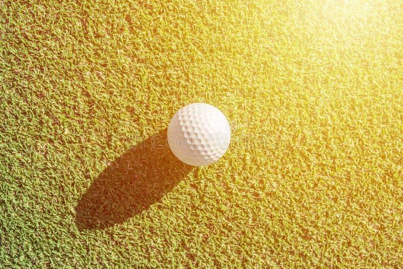 Bola de golfe branca na grama verde com sombra dura Bom para o backgr imagens de stock royalty free