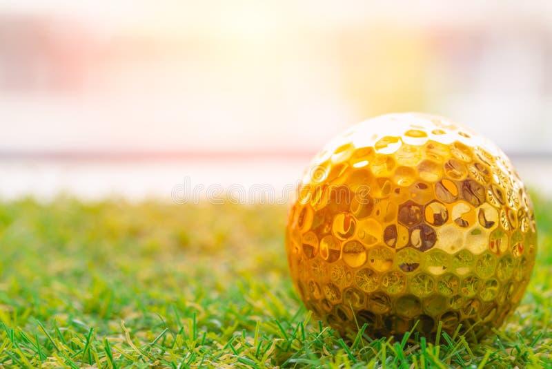 Bola de golfe dourada na grama verde com branco imagem de stock royalty free