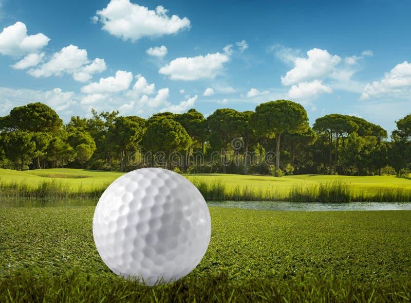 Bola de golfe e o campo de golfe fotografia de stock