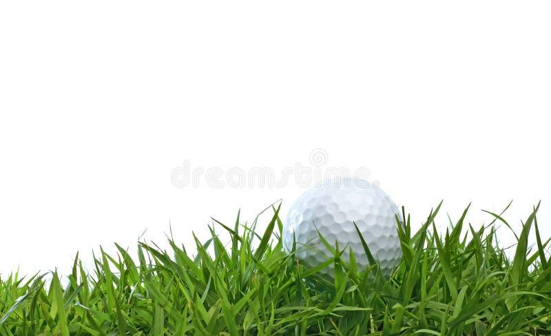 Bola de golfe na grama verde imagens de stock