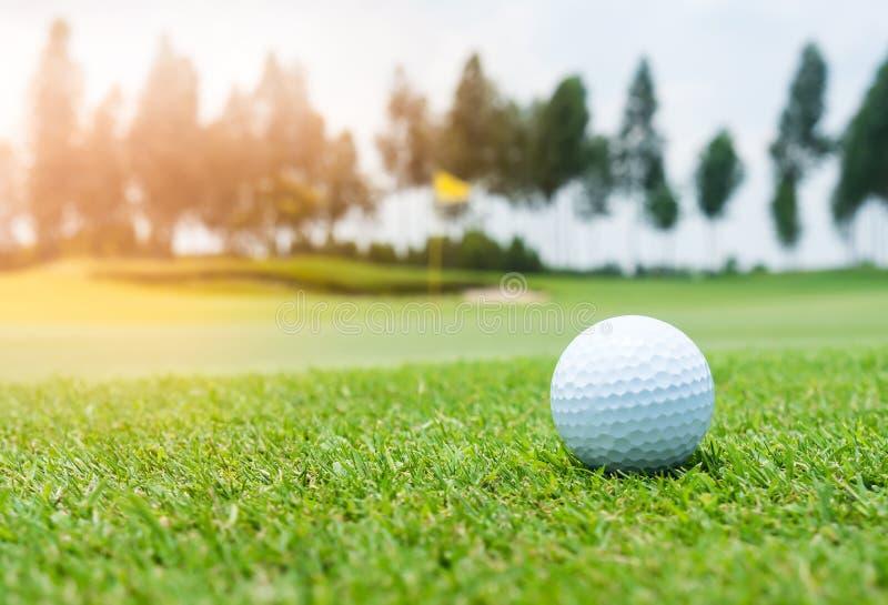 Bola de golfe no campo de golfe imagens de stock royalty free