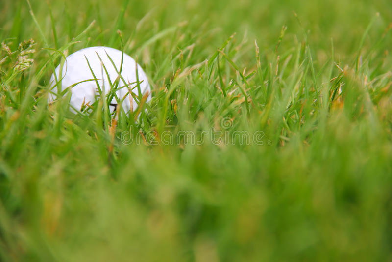 Bola de golfe no curso fotos de stock