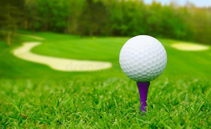 Bola de golfe no curso foto de stock royalty free