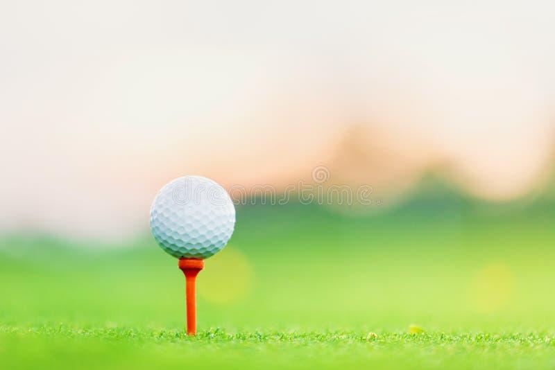 Bola de golfe no T no T fora com primeiro plano da grama verde do borr?o e para borrar o c?u colorido com fundo das ?rvores da si imagem de stock