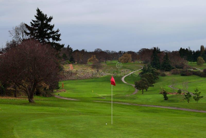 Bola de golfe no verde com fairway distante e o trajeto curvado do carro para tee a caixa fotografia de stock royalty free