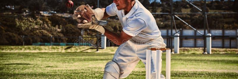 Bola de grillo de cogida del Wicketkeeper detrás de tocones fotos de archivo