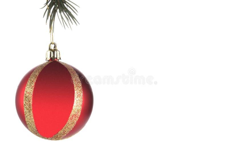 Bola de la Navidad colgada en una rama de árbol de navidad aislada en el fondo blanco con el espacio de la copia y trayectoria de fotos de archivo