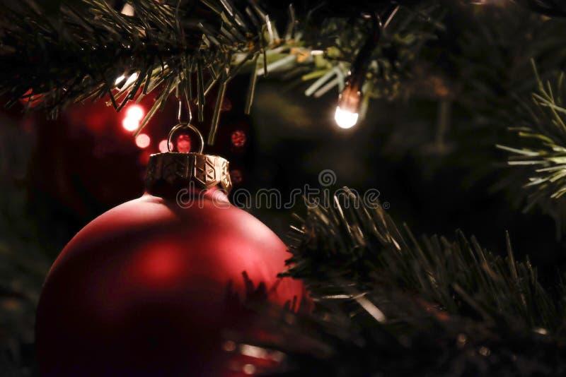 Bola de la Navidad en árbol fotografía de archivo libre de regalías