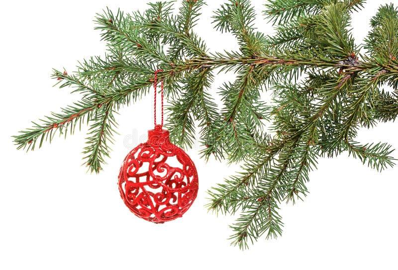 Bola de la Navidad en el árbol imagen de archivo libre de regalías
