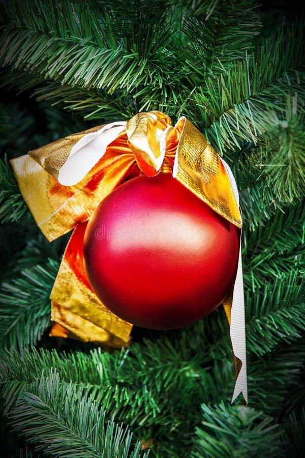 Bola de la Navidad y rama rojas del árbol de la picea imagenes de archivo