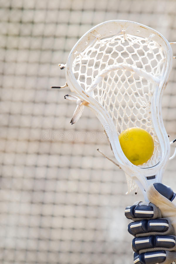 Bola de lacrosse amarilla que se sienta en el bolsillo de un palillo imagen de archivo libre de regalías