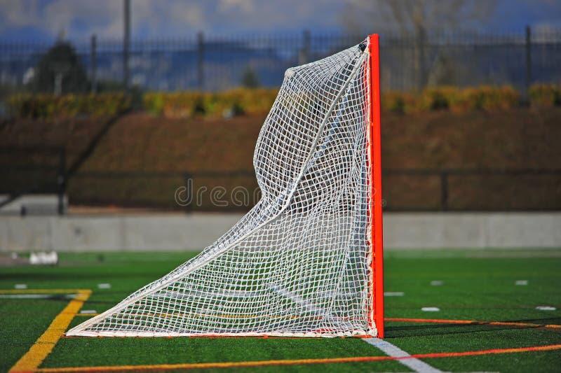 Bola de lacrosse en la red imagen de archivo libre de regalías