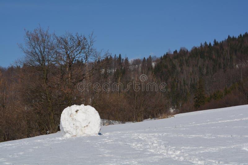 Bola de nieve grande fotografía de archivo