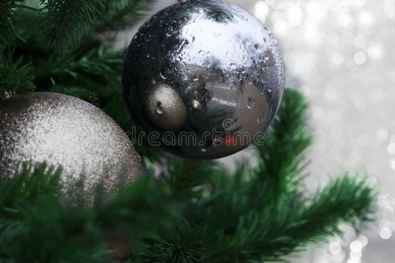 Bola de prata com gota da água no tre verde do Natal da decoração fotos de stock
