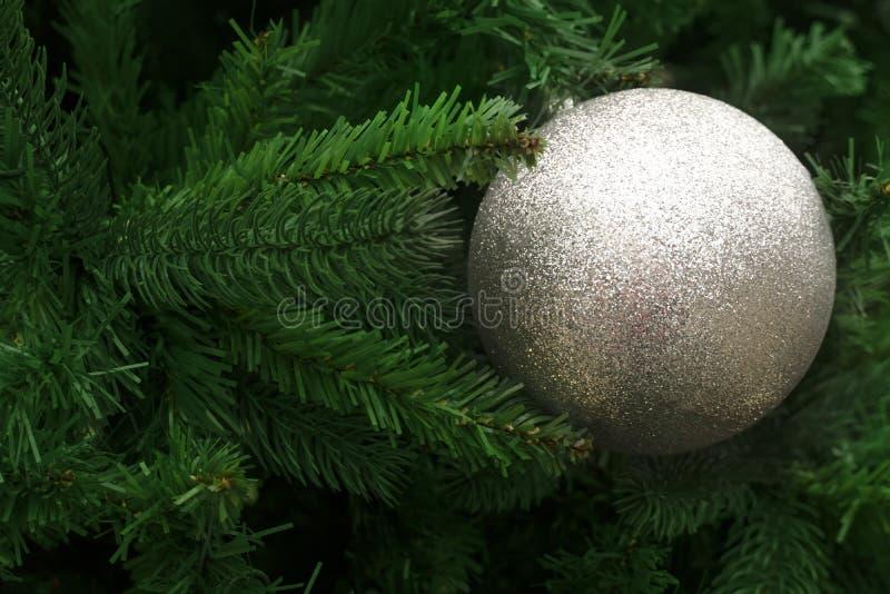 Bola de prata do Natal no pinheiro verde do borrão para o gree da estação fotografia de stock