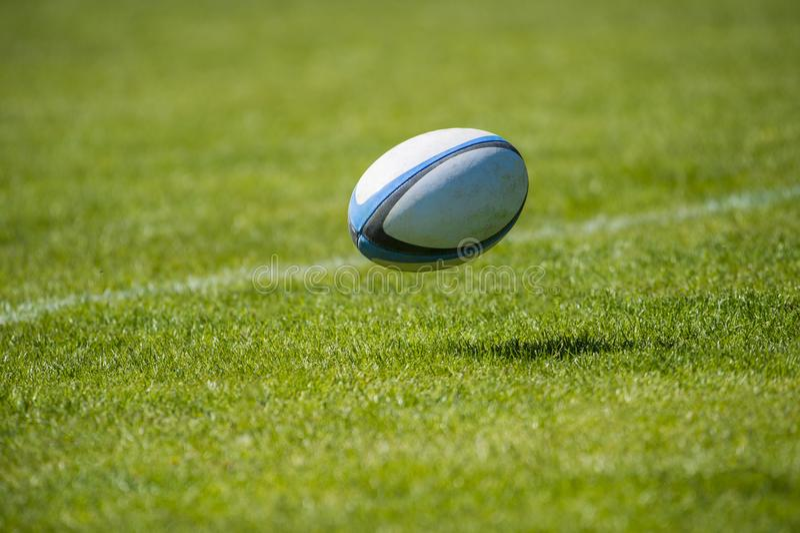 Bola de rugbi sobre la hierba en el estadio fotos de archivo libres de regalías