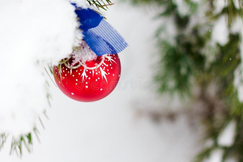 Bola decorativa vermelha na árvore de Natal imagens de stock