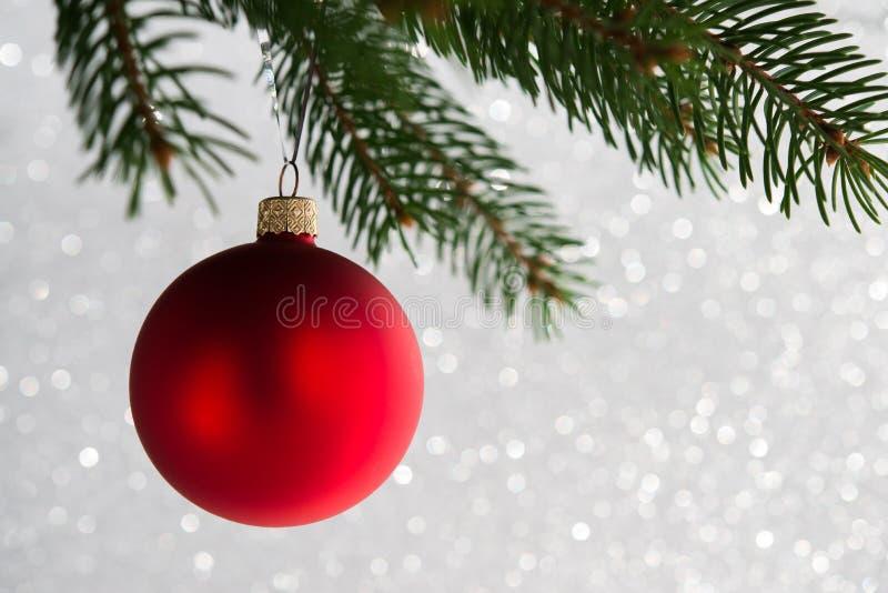 Bola decorativa vermelha na árvore do xmas no fundo do bokeh do brilho Cartão do Feliz Natal imagens de stock royalty free