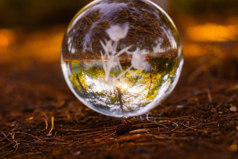 a bola do crystall na terra com outono alaranjado das folhas do outono scen imagem de stock royalty free