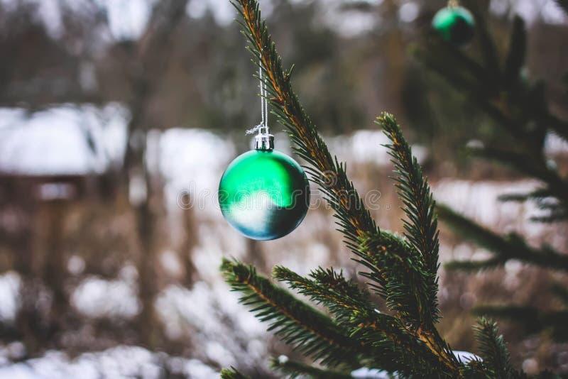 Bola do Natal que pendura na árvore de abeto imagens de stock