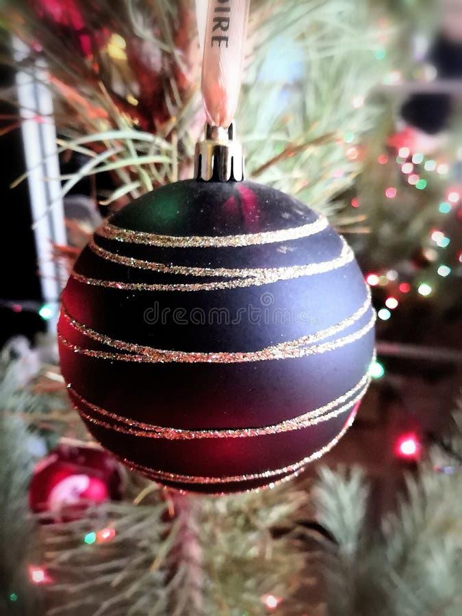 Bola en el árbol de navidad foto de archivo libre de regalías
