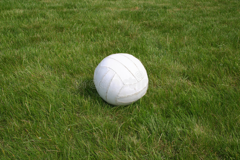 Bola en hierba. imagenes de archivo