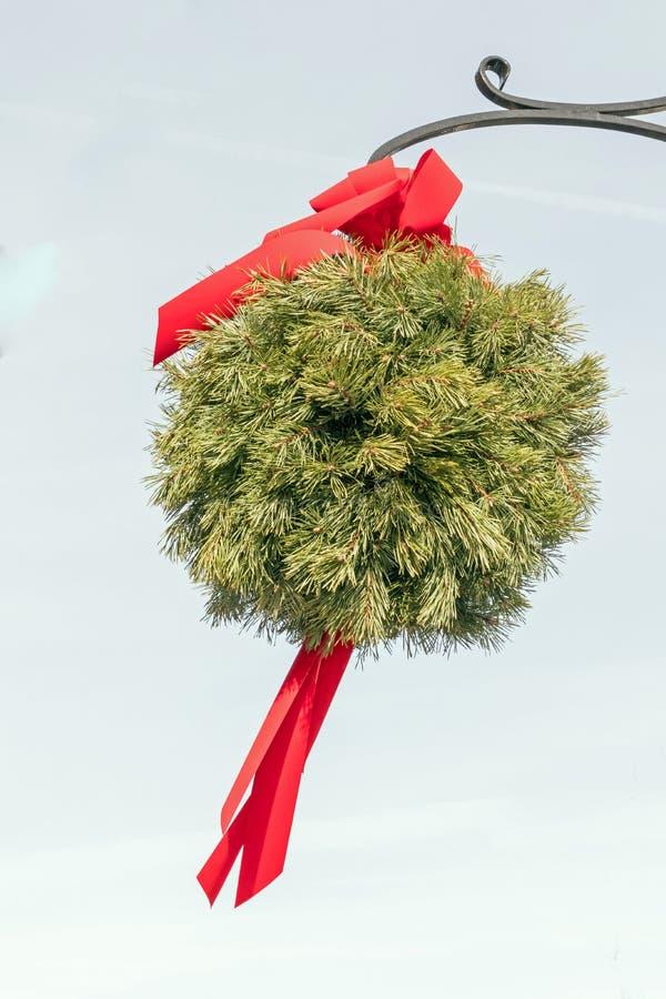 Bola Evergreen beijando com fita vermelha, vara ornamental imagens de stock