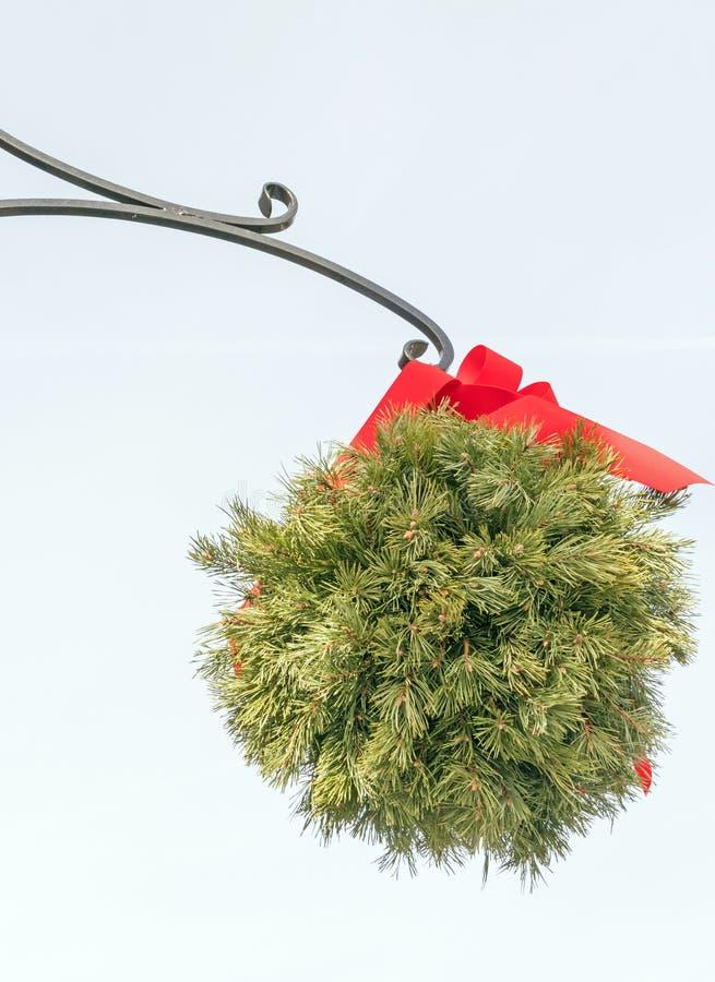 Bola Evergreen beijando com fita vermelha, vara ornamental foto de stock