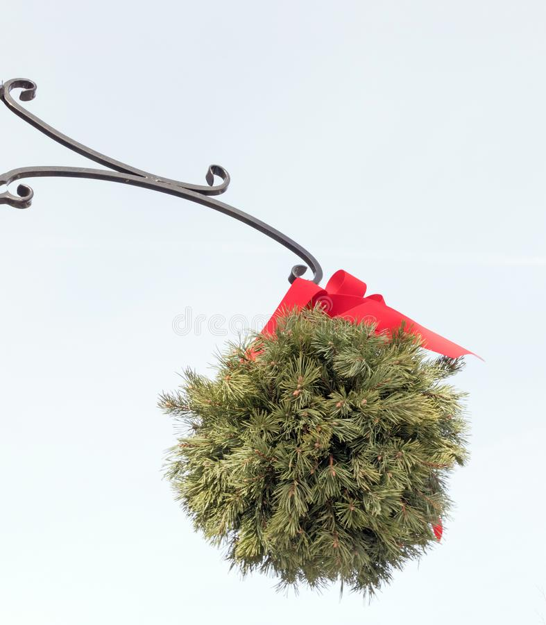 Bola Evergreen beijando com fita vermelha, vara ornamental fotografia de stock royalty free