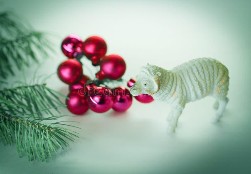 Bola roja de la Navidad Rama de árbol de navidad y un cordero del juguete Isolat imágenes de archivo libres de regalías