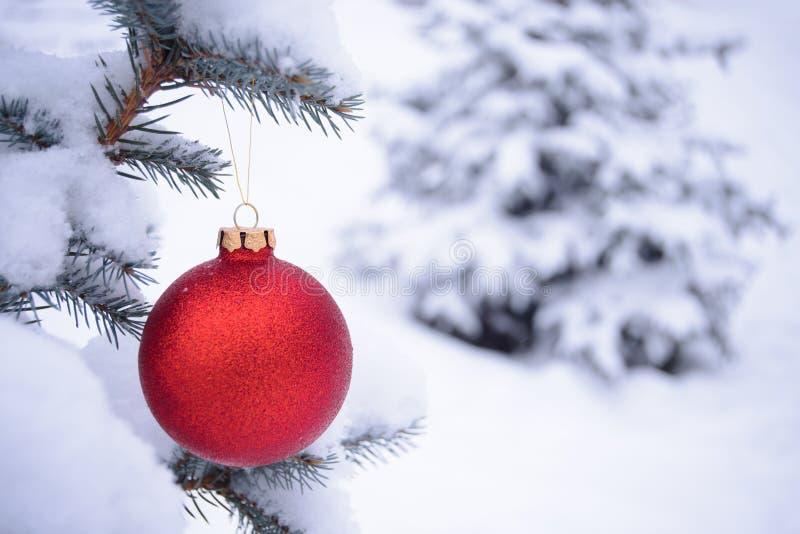 Bola vermelha bonita do Natal no ramo do abeto coberto com a neve imagens de stock