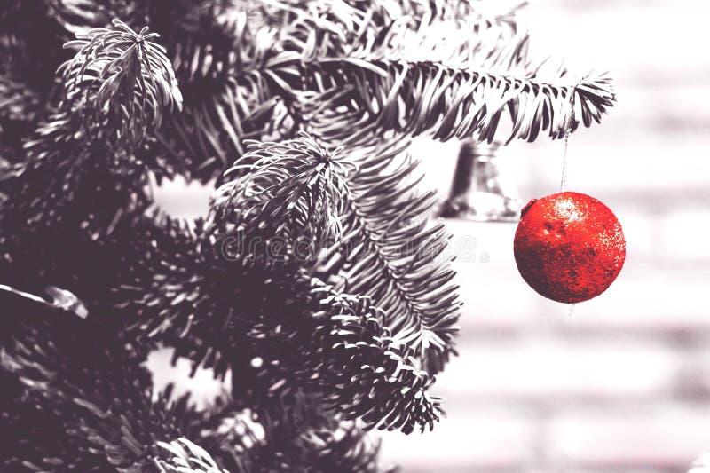 bola vermelha que pendura na árvore dos crismas imagens de stock