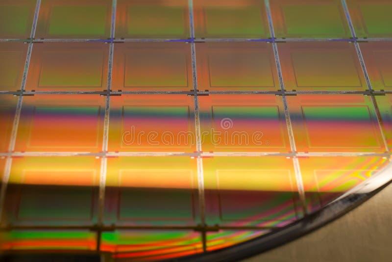 Bolacha e microcircuitos de silicone - uma bolacha é uma fatia fina de material do semicondutor, tal como um silicone cristalino, foto de stock