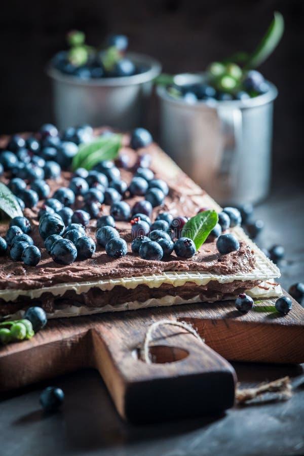Bolachas deliciosas feitas de bagas e do chocolate frescos fotos de stock