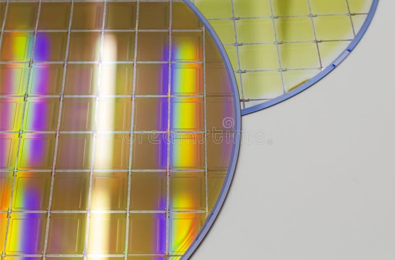 Bolachas e microcircuitos de silicone - uma bolacha é uma fatia fina de material do semicondutor, tal como um silicone cristalino fotos de stock royalty free