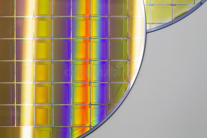Bolachas e microcircuitos de silicone - uma bolacha é uma fatia fina de material do semicondutor, tal como um silicone cristalino fotografia de stock