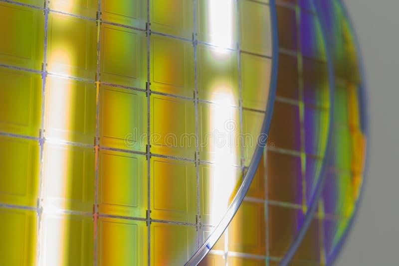 Bolachas e microcircuitos de silicone - uma bolacha é uma fatia fina de material do semicondutor, tal como um silicone cristalino foto de stock royalty free