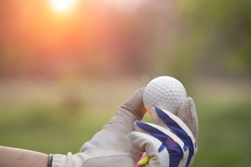 Bolas de golfe e T nas mãos foto de stock