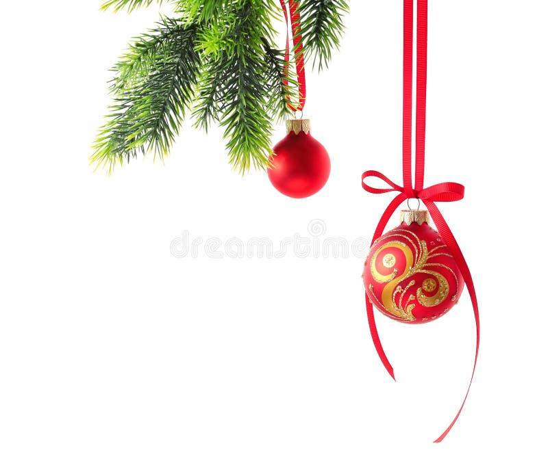 Bolas de la Navidad que cuelgan en rama del abeto contra el fondo blanco fotografía de archivo libre de regalías
