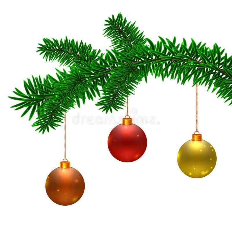 Bolas de la rama y de la Navidad de árbol de abeto del vector ilustración del vector