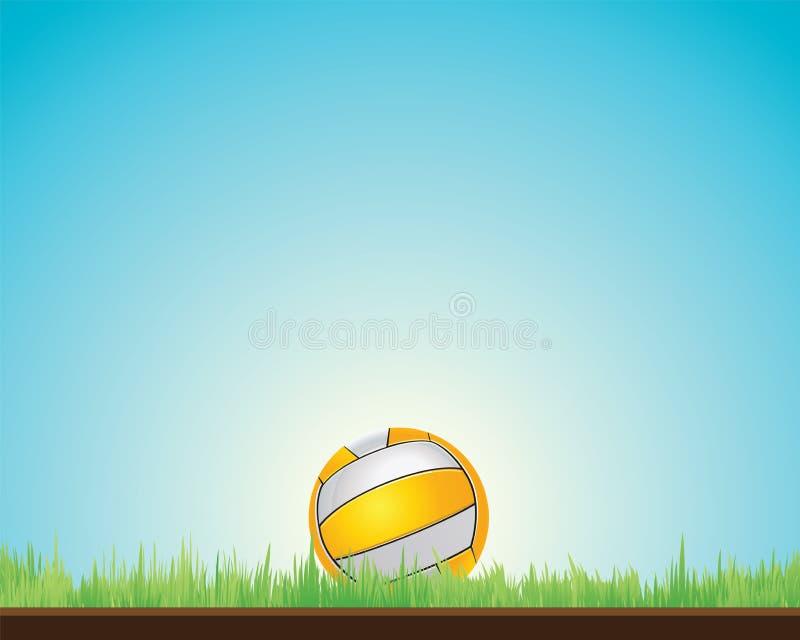 Bolas de los deportes del voleo, ilustración del vector