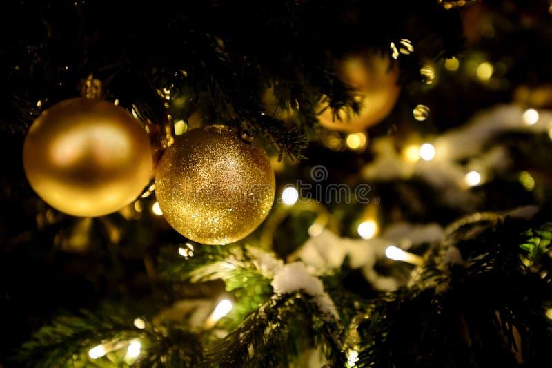 Bolas de oro en el primer del árbol de navidad con el fondo natural del día de fiesta de la nieve imagenes de archivo