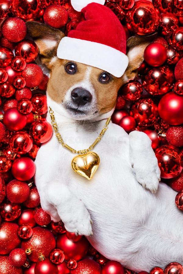 Bolas do cão e do xmas de Papai Noel do Natal como o fundo foto de stock