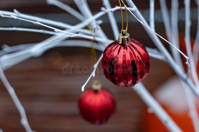 Bolas rojas de la Navidad en las ramas blancas imagenes de archivo
